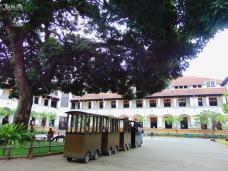 Mini Train dan pohon di halaman tengah